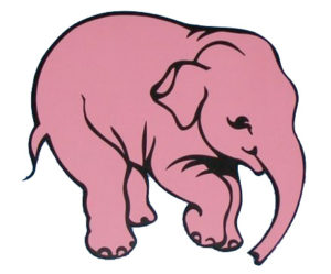 Don't Think Of A Pink Elephant – A Powerful Reframing Technique